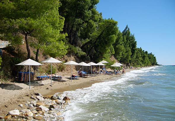 Elia Beach In Sithonia