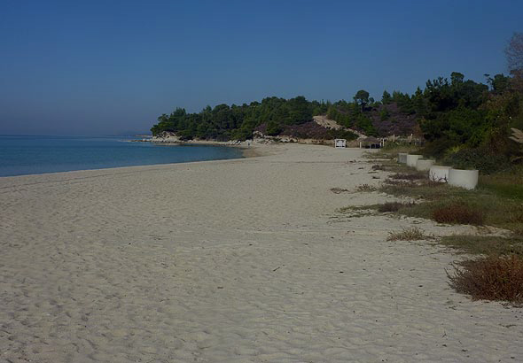 Kalogria beach in Sithonia